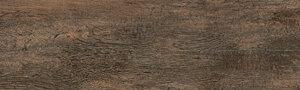 vtwonen Woodstone Honey Vloertegels 20x120cm