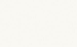 Douglas & Jones Grand White Glossy Wandtegels 40x120cm